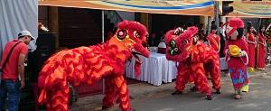 Công ty Huy Hoàng Minh chuẩn bị khai trương văn phòng giao dịch mới tại Thanh Hóa