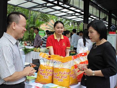 Vì sao gạo Việt bị đo ván cả sân nhà lẫn sân khách?