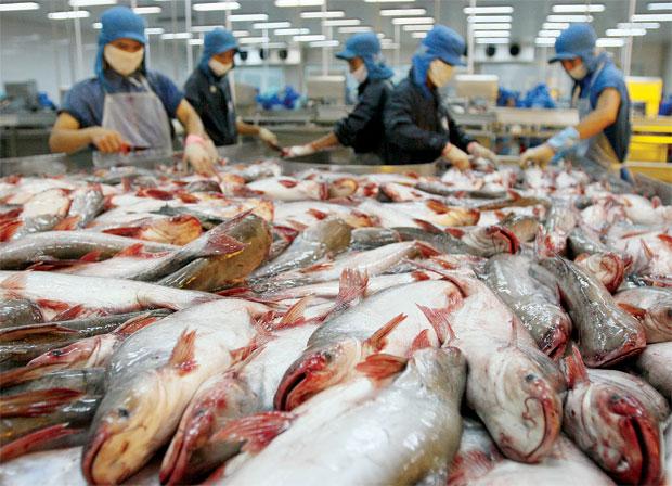 Đứng trước khó khăn, ngành thủy sản 2016 vẫn đạt kết quả khả quan